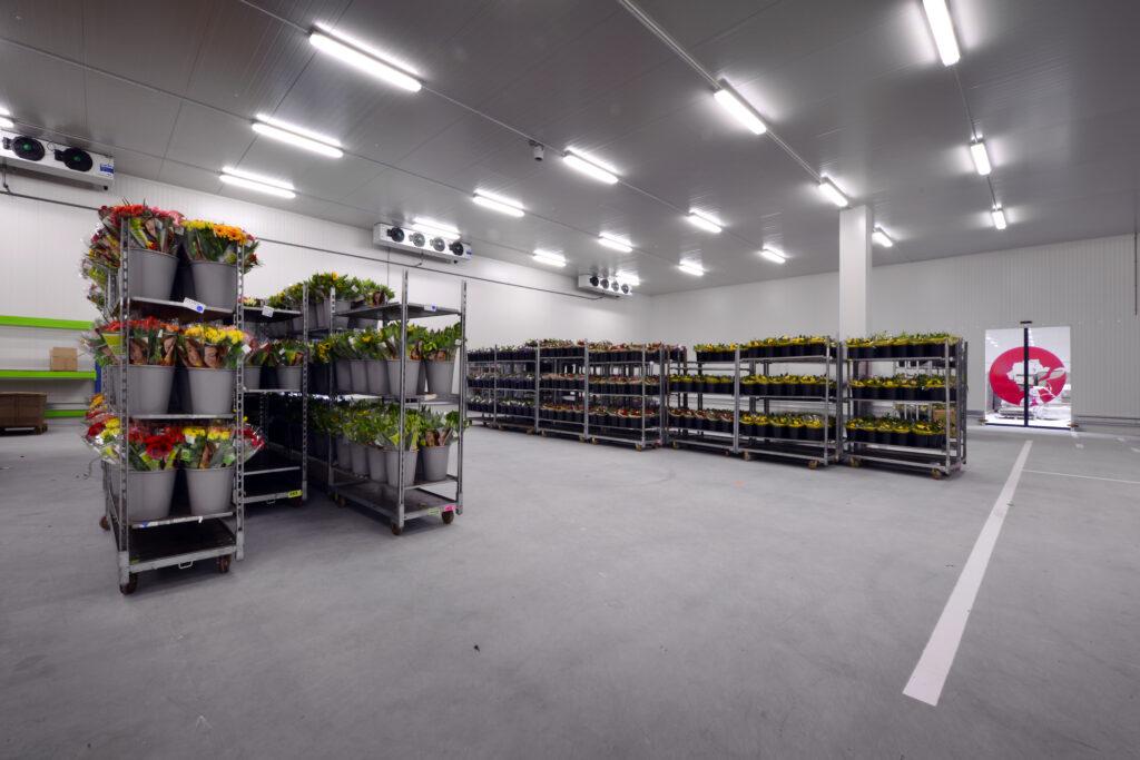 Nieuwbouw Celieplant/Bouquetnet - koelruimte