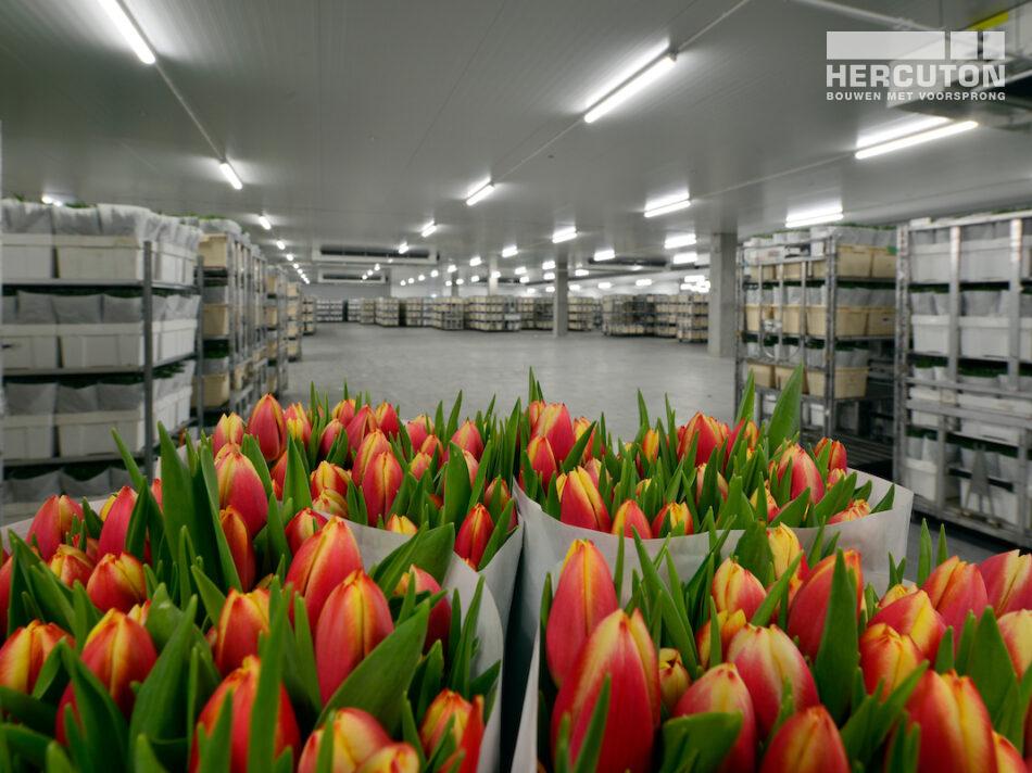 Distributiecentrum L&M Rijnsburg gebouwd door Hercuton