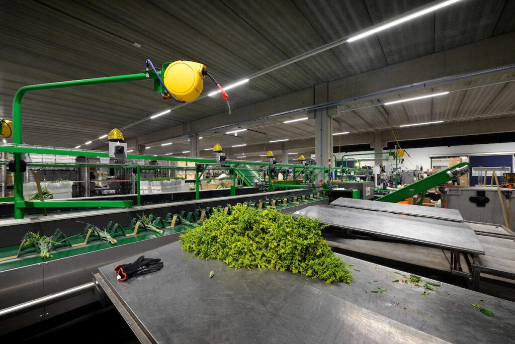 Hercuton heeft het distributiecentrum voor L&M Rijnsburg turnkey opgeleverd.