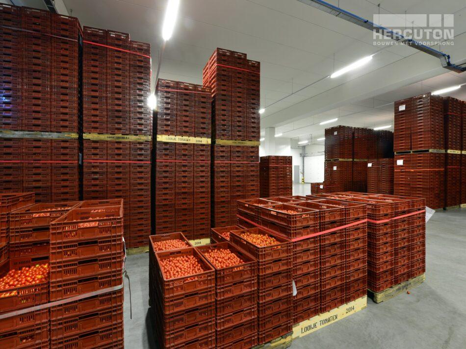 Hercuton heeft in Naaldwijk een kantoor met verpakkingscentrum gerealiseerd voor Looije Tomaten. - verpakkingscentrum